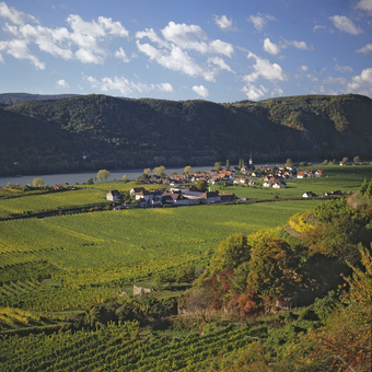 Unique cultural landscape of the Wachau World Heritage Site © Franz Hauleitner